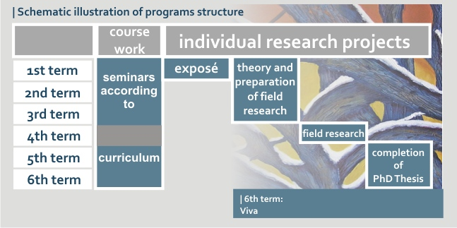 phd-structure